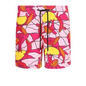 Vilebrequin MOOREA 8015H swim shorts