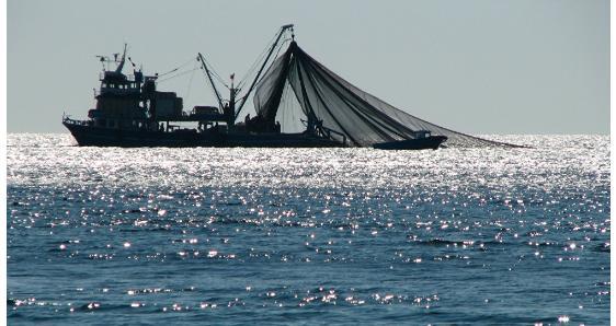 Οικονομική ενίσχυση για την προσωρινή παύση των αλιευτικών δραστηριοτήτωνπου πραγματοποιείται