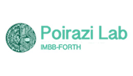 Poirazi Lab